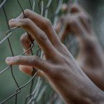 Coördinator gevangeniswezen en justitiabelen
